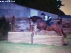 Photo - Bacardi Jumping xc Fence Number 3