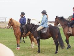 Photo - Riding Club training event with Amy McMahon