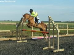 Photo - Jemma on Toffee jumping 95cms