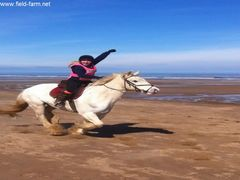 Photo - Ellie enjoying riding Hercules on the beach