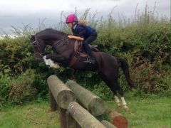 Photo - Harri jumps logs