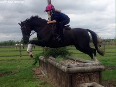 Photo - Having a go at the big boys XC jump